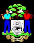 Camara Municipal de Cafarnaum